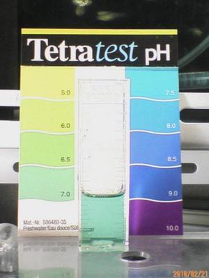 水道水_pH.jpg
